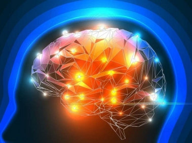Brain in a Head Silhouette