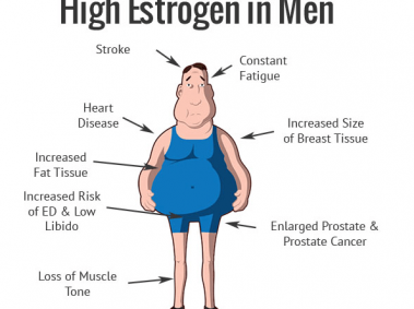 Estrogen Levels in Mens